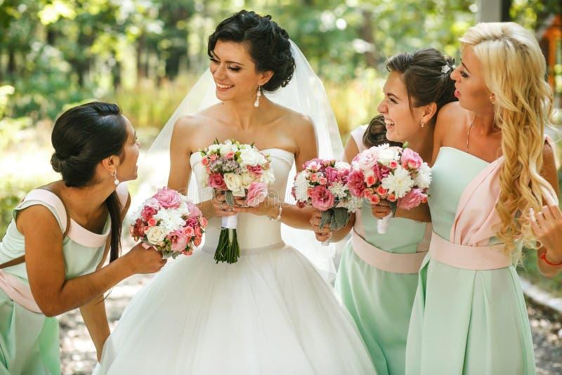Θαυμασμός παράνυμφων της νύφης στοκ εικόνες