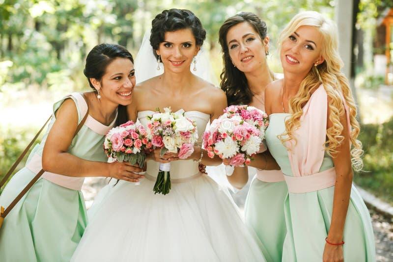 Θαυμασμός παράνυμφων της νύφης στοκ φωτογραφίες