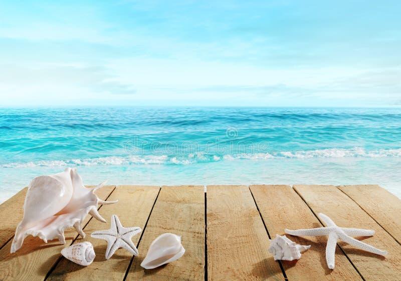 Θαλάσσιος περίπατος με τα κοχύλια στοκ φωτογραφία με δικαίωμα ελεύθερης χρήσης