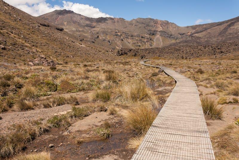 Θαλάσσιος περίπατος στα έλη στο εθνικό πάρκο Tongariro στοκ φωτογραφίες με δικαίωμα ελεύθερης χρήσης