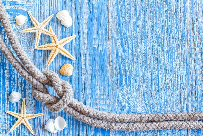 Θαλάσσιο σχοινί με τα κοχύλια θάλασσας στοκ φωτογραφία