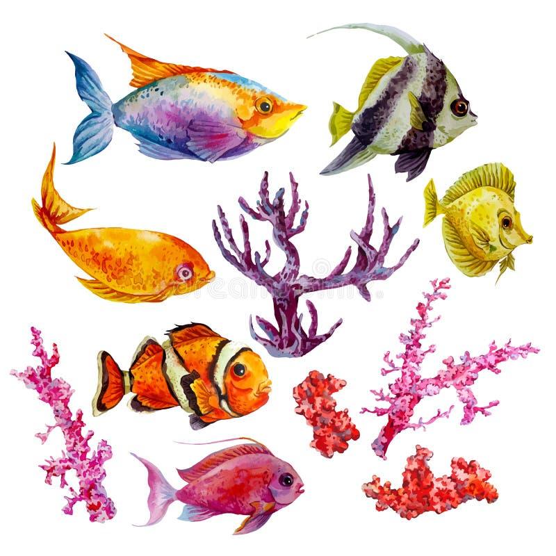 Θαλάσσιο σύνολο διανυσματικών τροπικών ψαριών Watercolor απεικόνιση αποθεμάτων
