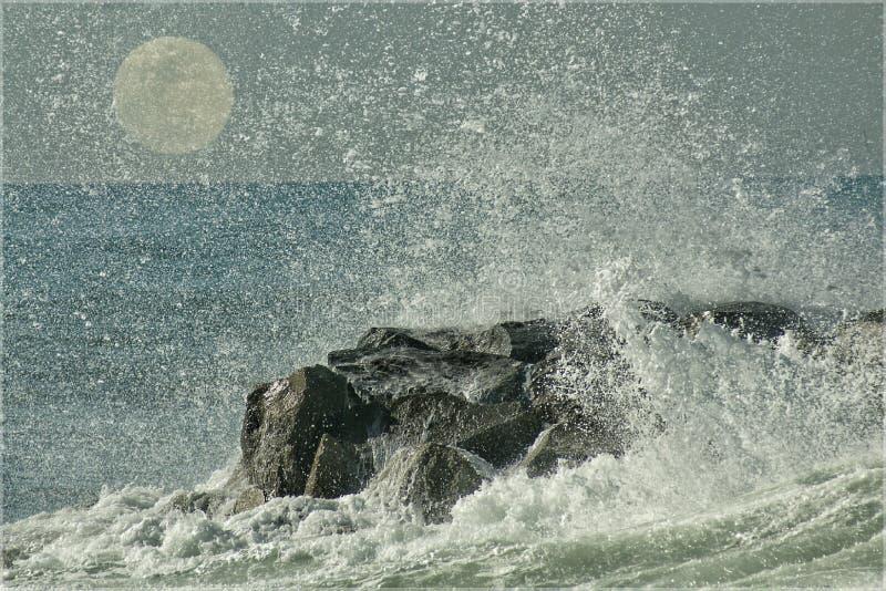 Θαλάσσιο φεγγάρι στοκ εικόνες με δικαίωμα ελεύθερης χρήσης