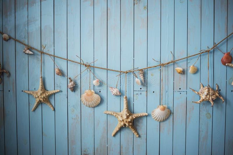 Θαλασσινά κοχύλια στις μπλε διακοπές διακοπών πινάκων στοκ εικόνες