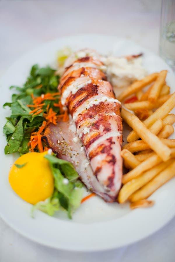 Θαλασσινά Calamari στοκ φωτογραφία με δικαίωμα ελεύθερης χρήσης