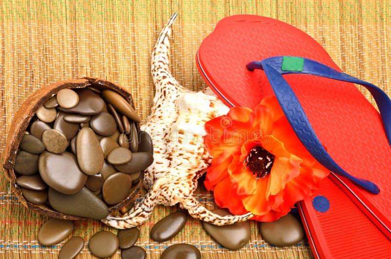 Θαλασσινό κοχύλι, λουλούδι, χαλίκια και σανδάλια πτώσης κτυπήματος στοκ φωτογραφίες