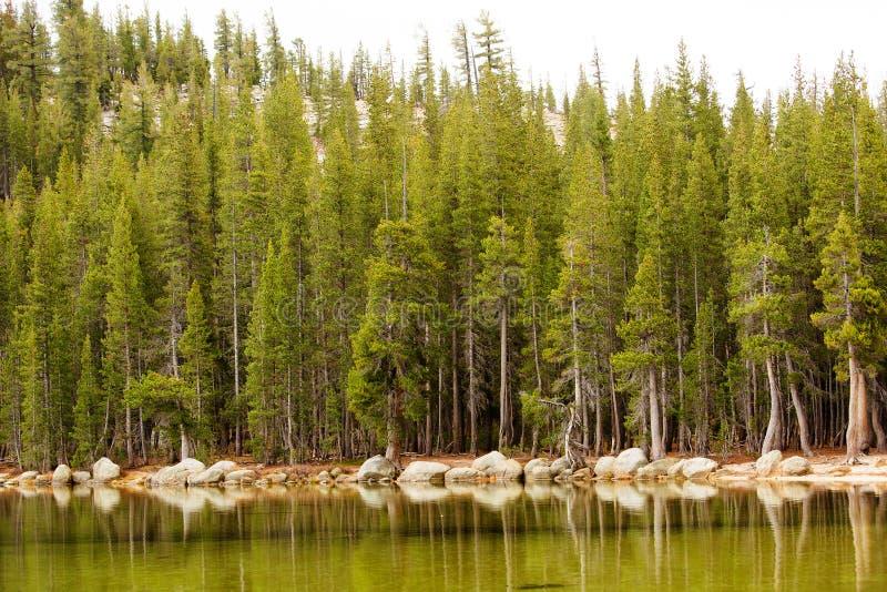 Θεαματικές απόψεις του εθνικού πάρκου Yosemite το φθινόπωρο, Calif στοκ φωτογραφία