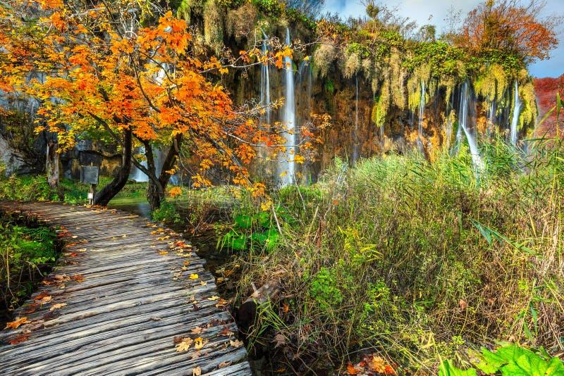 Θεαματική διάβαση τουριστών στο ζωηρόχρωμο δάσος φθινοπώρου, λίμνες Plitvice, Κροατία στοκ εικόνα με δικαίωμα ελεύθερης χρήσης