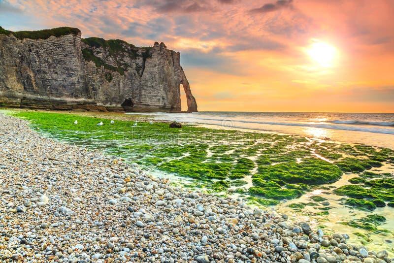 Θεαματική mossy παραλία και μαγικό ηλιοβασίλεμα κοντά σε Etretat, Νορμανδία, Γαλλία στοκ εικόνες