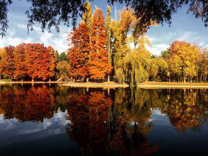 Θεαματικό τοπίο φθινοπώρου στο πάρκο IOR, Βουκουρέστι στοκ εικόνα με δικαίωμα ελεύθερης χρήσης