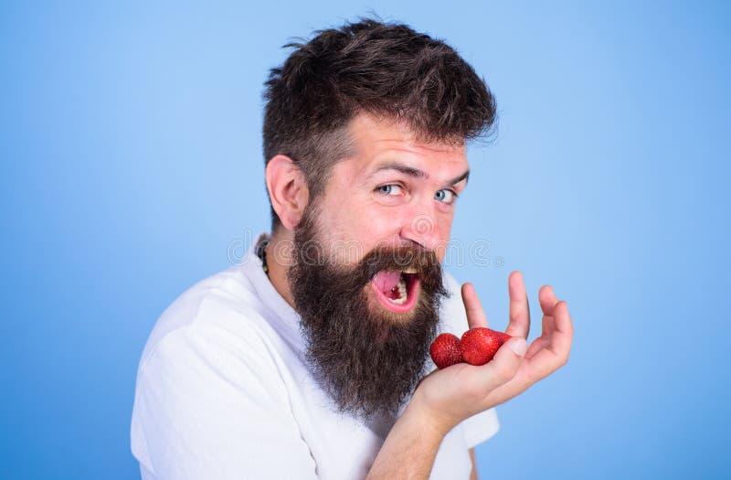 Θελήστε να δοκιμάσετε το μούρο μου Hipster γενειοφόρο κρατά τις φράουλες στο φοίνικα, κλείνει επάνω Εύθυμη μετάβαση ατόμων να φάν στοκ φωτογραφίες με δικαίωμα ελεύθερης χρήσης