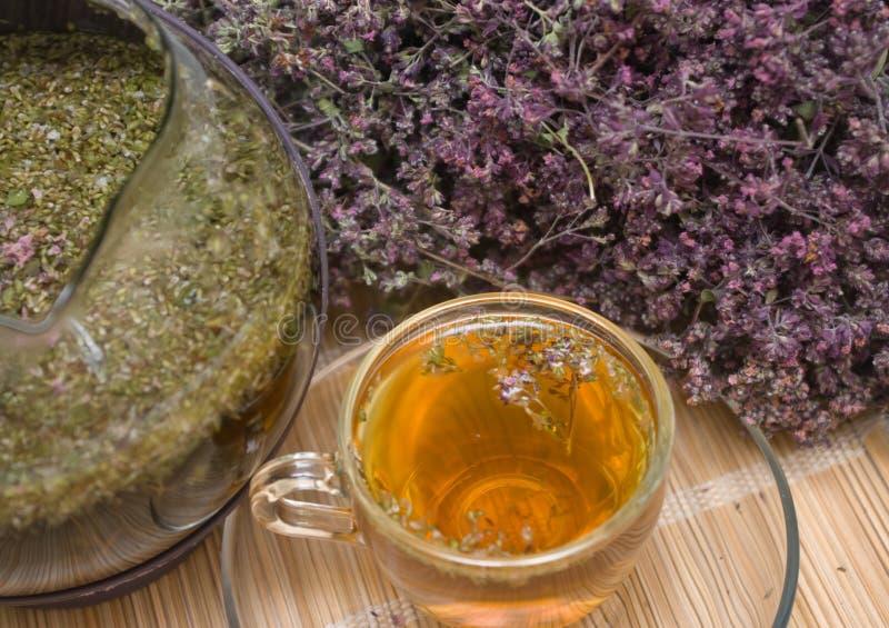 θεραπευτικό origanum τσάι στοκ φωτογραφία