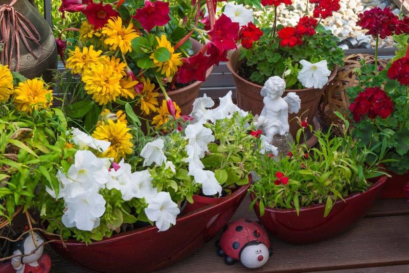 Θερινά λουλούδια στο πεζούλι στοκ εικόνα