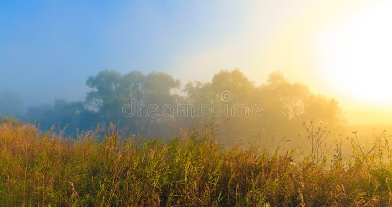 θερινή ανατολή στοκ εικόνες