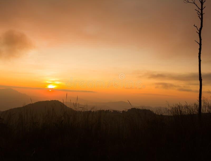 θερινή ανατολή βουνών τοπίων στοκ εικόνες