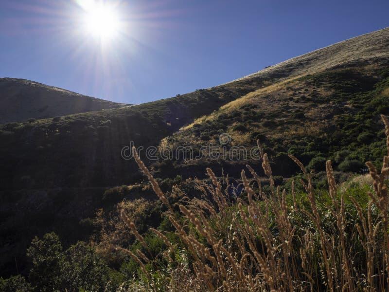 Θερινή ημέρα στα βουνά στοκ εικόνα με δικαίωμα ελεύθερης χρήσης
