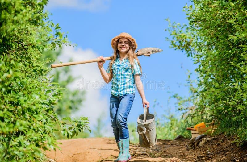 Θερινή καλλιέργεια μικρό κορίτσι αγροτών ο κήπος, το φτυάρι και το πότισμα μπορούν ηλιόλουστος υπαίθριος εργαζομένων παιδιών οικο στοκ φωτογραφίες με δικαίωμα ελεύθερης χρήσης