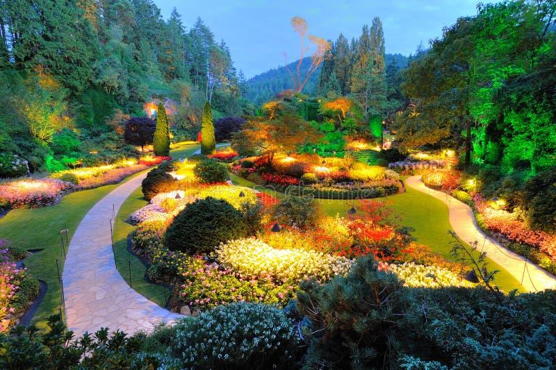 Θερινή νύχτα κήπων στοκ εικόνες
