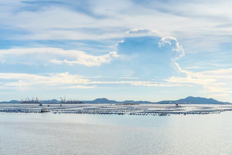 Θερινή περίοδος ημέρας, Σριράτσα, Τσονμπούρι, Ταϊλάνδη στοκ φωτογραφίες