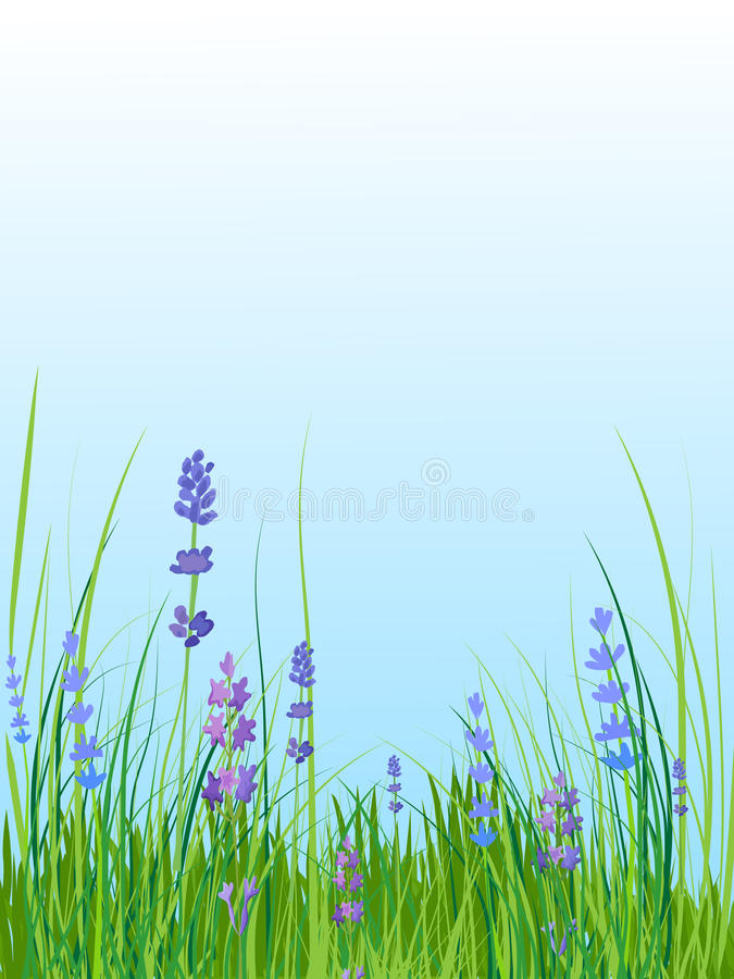 ΘΕΡΙΝΟ τοπίο Ξέφωτο με τα μπλε και πορφυρά λουλούδια ελεύθερη απεικόνιση δικαιώματος