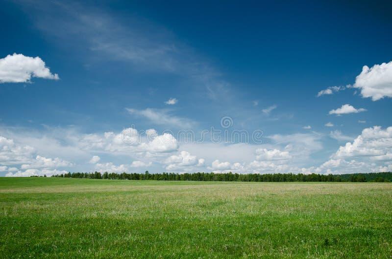 ΘΕΡΙΝΟ τοπίο στοκ φωτογραφία