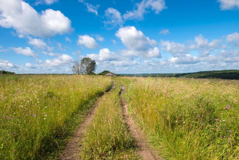 Θερινός αγροτικός δρόμος στοκ εικόνες με δικαίωμα ελεύθερης χρήσης