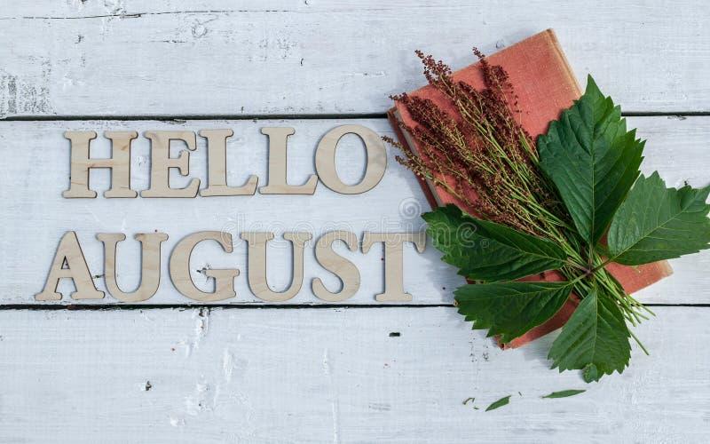Θερινό έμβλημα: Λέξη γειά σου Αύγουστος, παλαιά βίβλος και πράσινα φύλλα σε ένα άσπρο ξύλινο αγροτικό υπόβαθρο Το οριζόντιο επίπε στοκ εικόνα