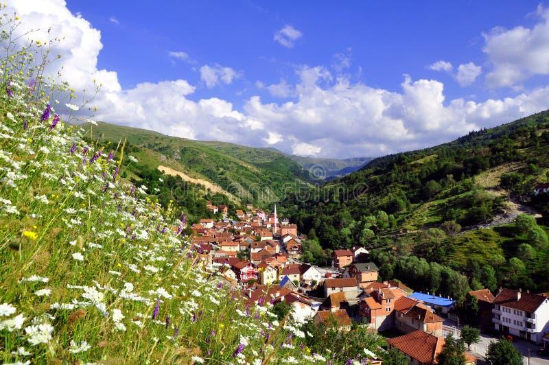 Θερινό αγροτικό τοπίο με το χωριό στοκ εικόνα