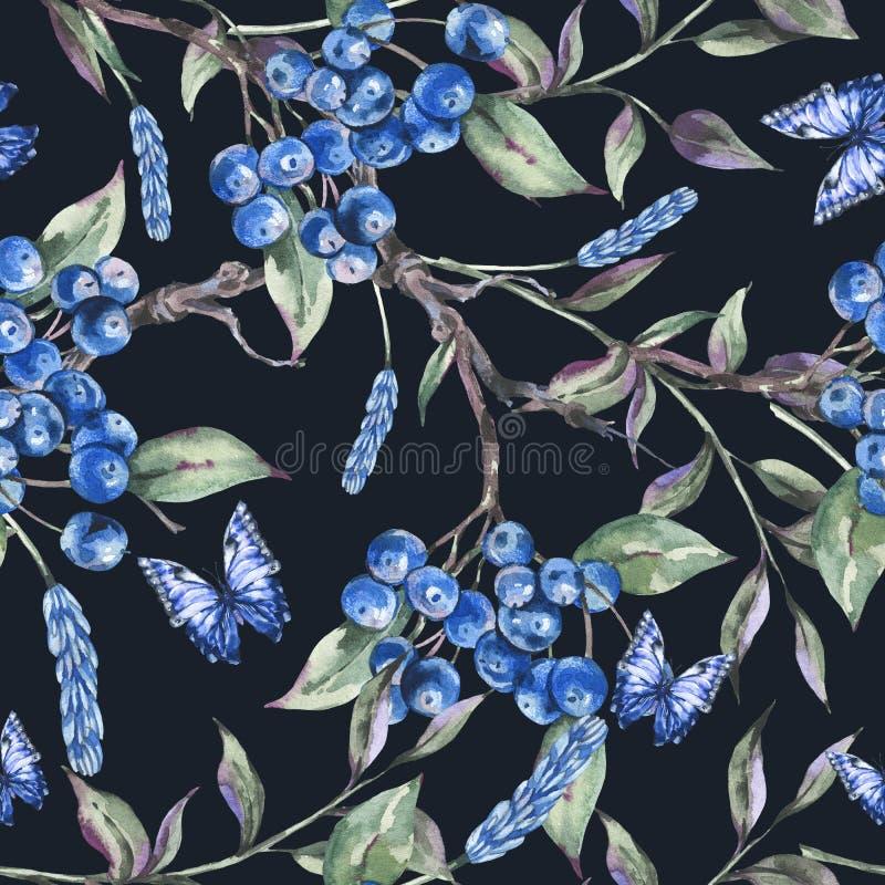 Θερινό δασικό άνευ ραφής σχέδιο Watercolor με τη δέσμη των σκούρο μπλε μούρων, πράσινα φύλλα, πεταλούδα απεικόνιση αποθεμάτων