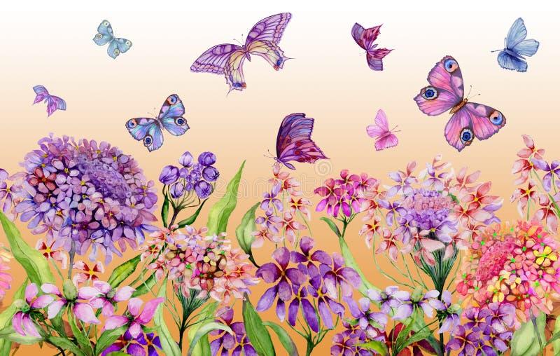Θερινό ευρύ έμβλημα Ζωηρά λουλούδια iberis και ζωηρόχρωμες πεταλούδες στο πορτοκαλί υπόβαθρο Άνευ ραφής πανοραμικό floral σχέδιο ελεύθερη απεικόνιση δικαιώματος