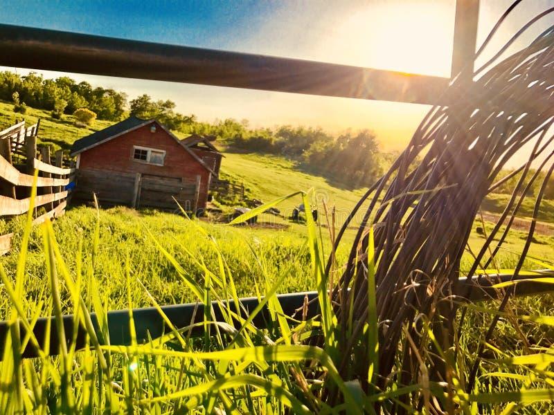 Θερινό ηλιοβασίλεμα αγροτικών σιταποθηκών στοκ φωτογραφίες με δικαίωμα ελεύθερης χρήσης