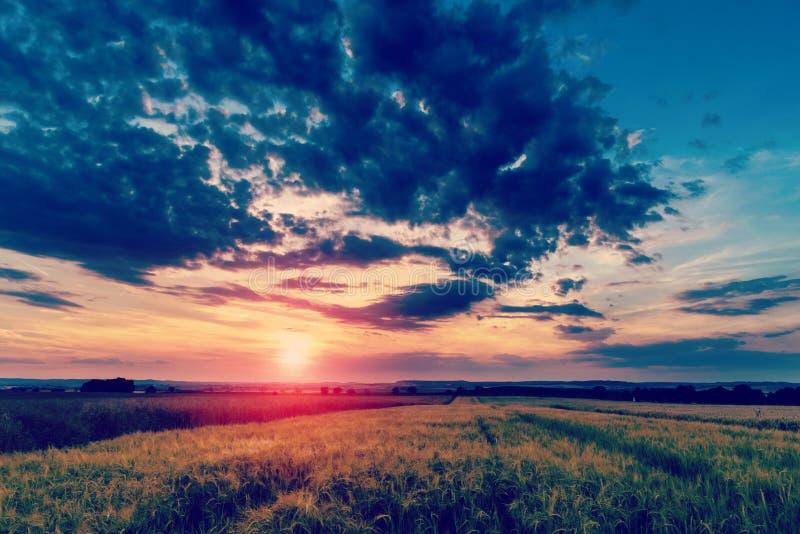Θερινό ηλιοβασίλεμα πέρα από έναν τομέα στοκ εικόνες με δικαίωμα ελεύθερης χρήσης