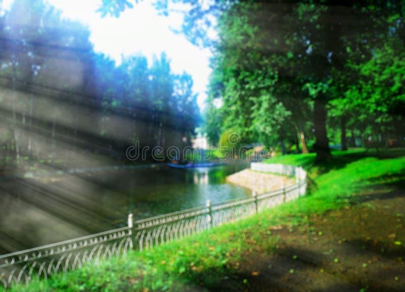 Θερινό πάρκο με το υπόβαθρο ελαφριών ακτίνων bokeh στοκ εικόνα με δικαίωμα ελεύθερης χρήσης