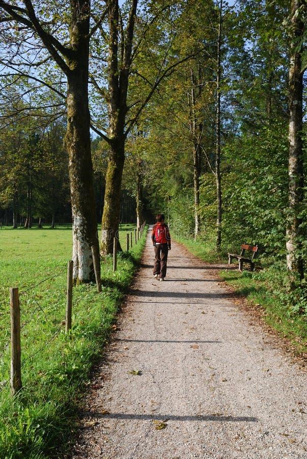 θερινό περπάτημα στοκ φωτογραφίες με δικαίωμα ελεύθερης χρήσης