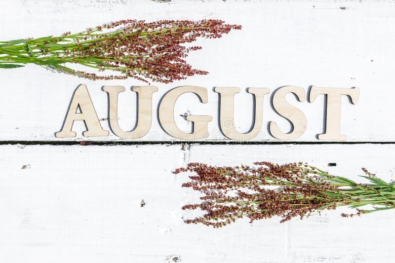 Θερινό σχέδιο: Λέξη Αύγουστος και πράσινα φύλλα σε ένα άσπρο ξύλινο αγροτικό υπόβαθρο Το οριζόντιο επίπεδο βρέθηκε στοκ φωτογραφία με δικαίωμα ελεύθερης χρήσης