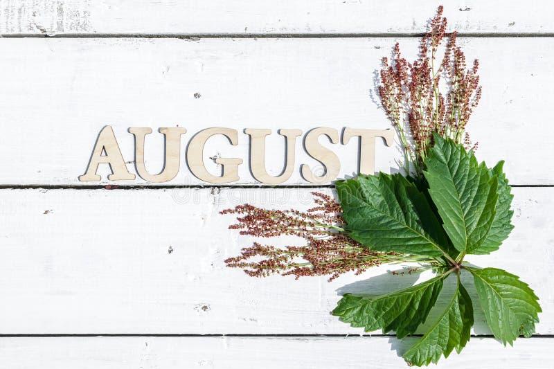 Θερινό σχέδιο: Λέξη Αύγουστος και πράσινα φύλλα σε ένα άσπρο ξύλινο αγροτικό υπόβαθρο Το οριζόντιο επίπεδο βρέθηκε στοκ εικόνα