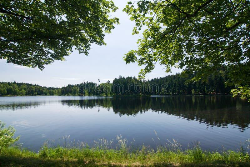 Θερινό τοπίο με μια λίμνη στοκ εικόνες