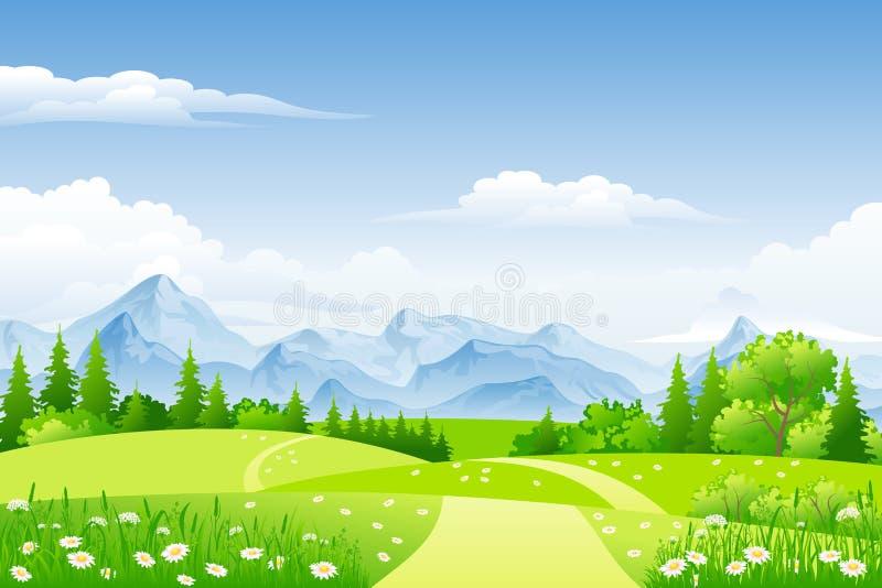 Θερινό τοπίο με τα λιβάδια ελεύθερη απεικόνιση δικαιώματος