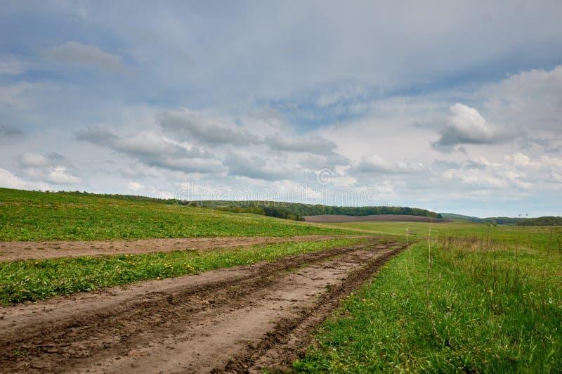 Θερινό τοπίο με τη χλόη, το δρόμο και τα σύννεφα στοκ φωτογραφίες