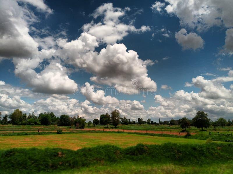 Θερινό τοπίο με τον πράσινο τομέα κάτω από τα σύννεφα στον ουρανό στοκ φωτογραφίες