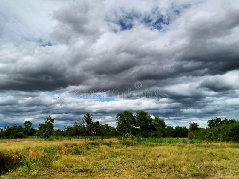 Θερινό τοπίο με τον πράσινο τομέα κάτω από τα σύννεφα στον ουρανό στοκ εικόνα