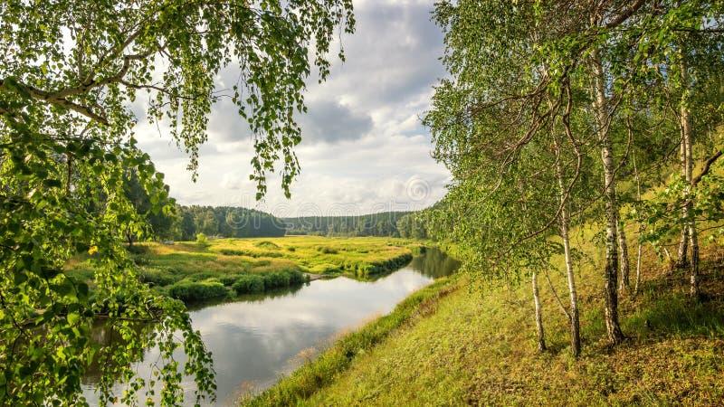 Θερινό τοπίο με το άλσος σημύδων και το λόφο, Ρωσία, τα Ουράλια στοκ εικόνες