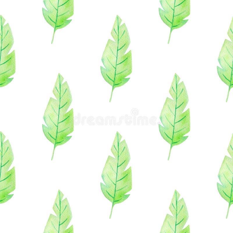 Θερινό τροπικό άνευ ραφής σχέδιο Watercolor διανυσματική απεικόνιση