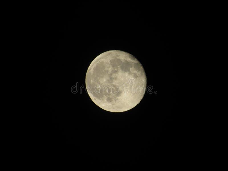 Θερινό φεγγάρι στοκ εικόνες