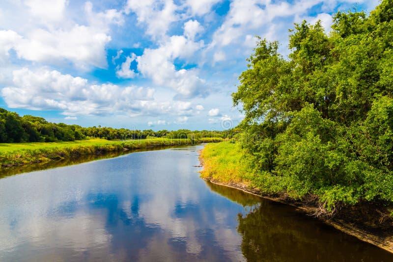 Θερινό φυσικό τοπίο με τον ποταμό Υγρότοπος στη Φλώριδα, ΗΠΑ στοκ φωτογραφία με δικαίωμα ελεύθερης χρήσης