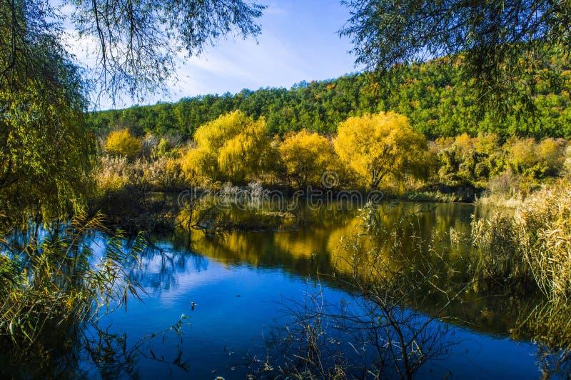 θερμή, ημέρα φθινοπώρου από τη λίμνη στα βουνά στοκ φωτογραφία