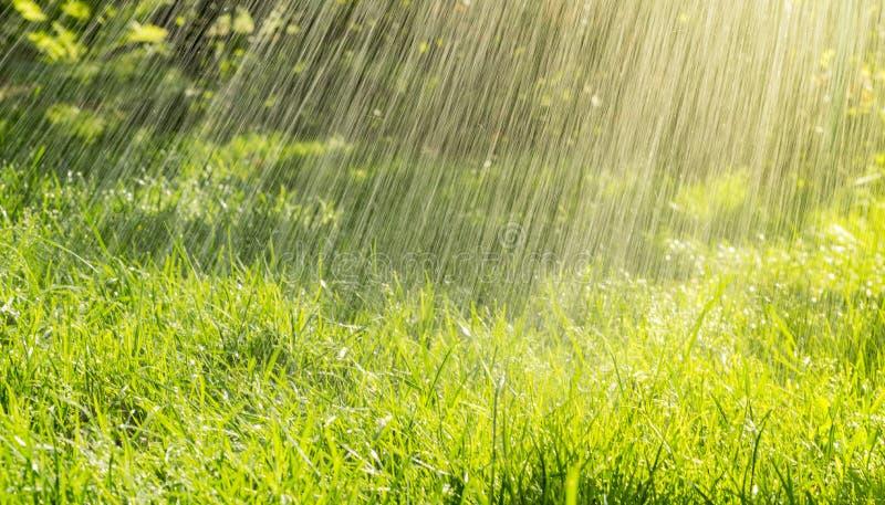 Θερμή θερινή βροχή και ηλιόλουστη ημέρα στοκ φωτογραφία με δικαίωμα ελεύθερης χρήσης