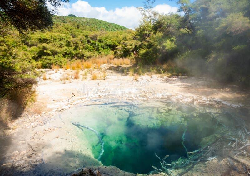 Θερμικές λίμνες Tokaanu στη Νέα Ζηλανδία στοκ φωτογραφία