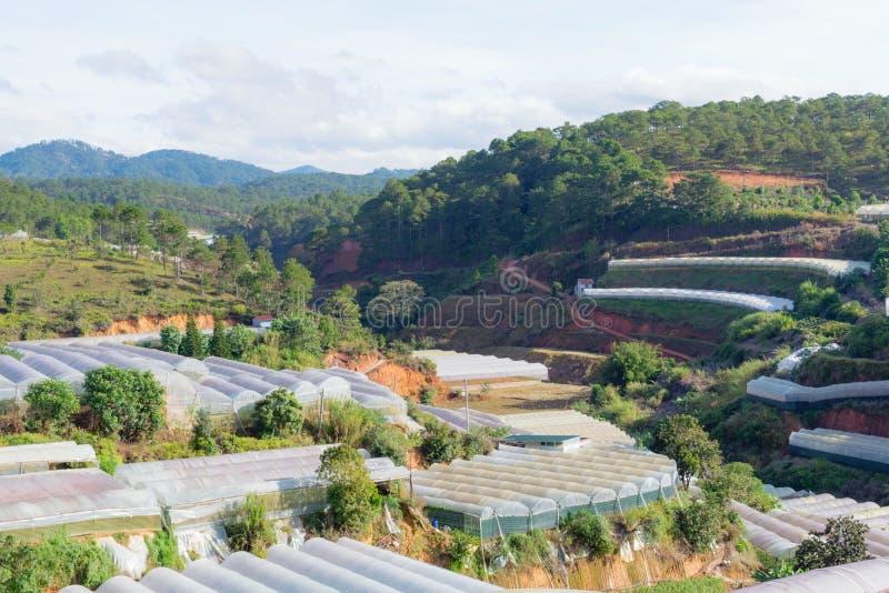 Θερμοκήπια και πράσινοι λόφοι στοκ φωτογραφίες