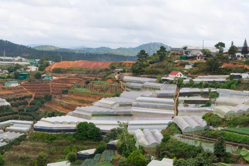 Θερμοκήπιο, σπίτια κλουβιών, γεωργία υψηλής τεχνολογίας, φρέσκα λαχανικά ανάπτυξης, καρποί και άλλα προϊόντα υψηλού - ποιοτικό μέ στοκ φωτογραφία με δικαίωμα ελεύθερης χρήσης